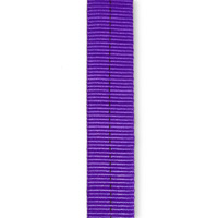Tubular Webbing 1 inch x 10 yards Purple